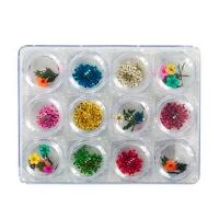 IRISK professional,  Сухоцветы набор в контейнере 12 видов, №02