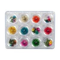 IRISK professional,  Сухоцветы набор в контейнере 12 видов, №04