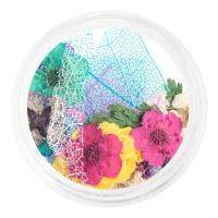 IRISK professional, Сухоцветы набор в баночке, №02