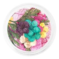 IRISK professional, Сухоцветы набор в баночке, №04