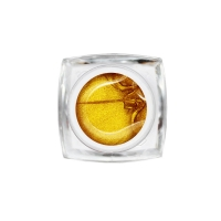 Nika Nagel, STRETCH-GEL (паутинка) золото (5 г)