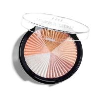 TNL, Хайлайтер для лица Perfect Shine, 6.5 г